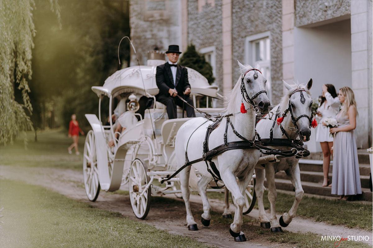wesele w wiesiółce